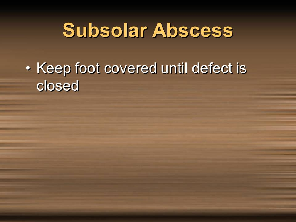 Subsolar Abscess Keep foot covered until defect is closed