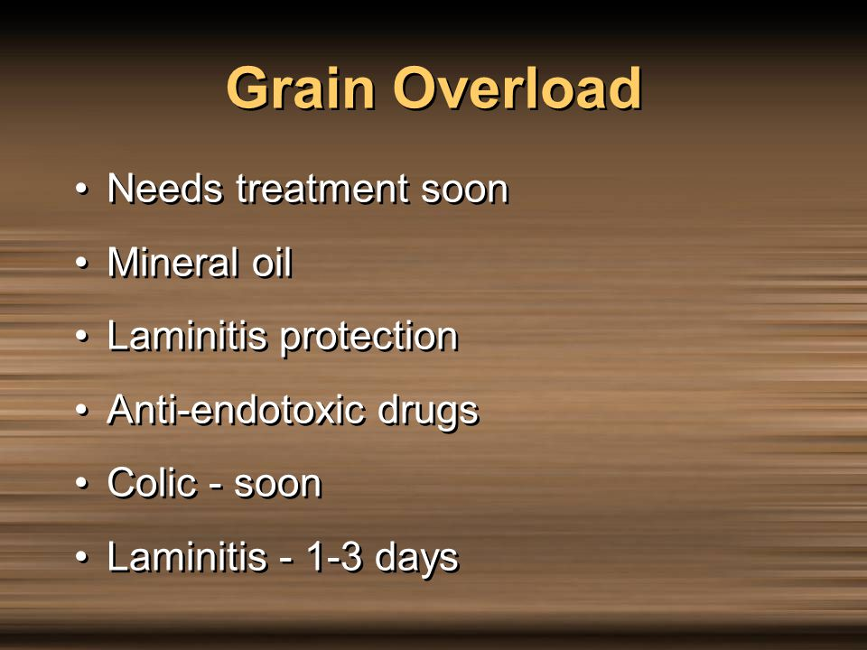Grain Overload Needs treatment soon Mineral oil Laminitis protection