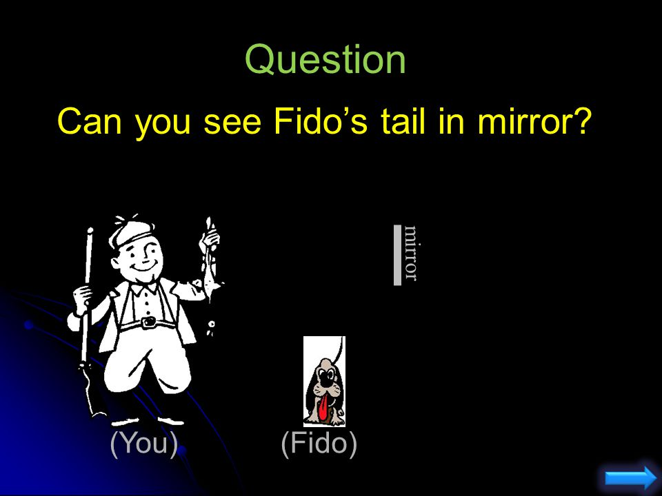 Question Can you see Fido's tail in mirror mirror (You) (Fido)
