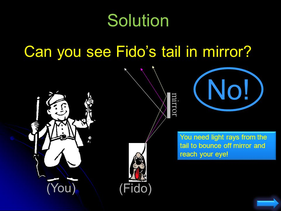 No! Solution Can you see Fido's tail in mirror (You) (Fido) mirror
