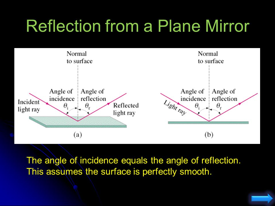 Reflection from a Plane Mirror