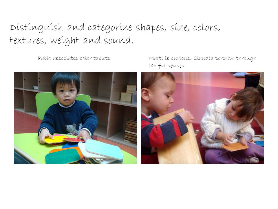 Distinguish and categorize shapes, size, colors, textures, weight and sound.
