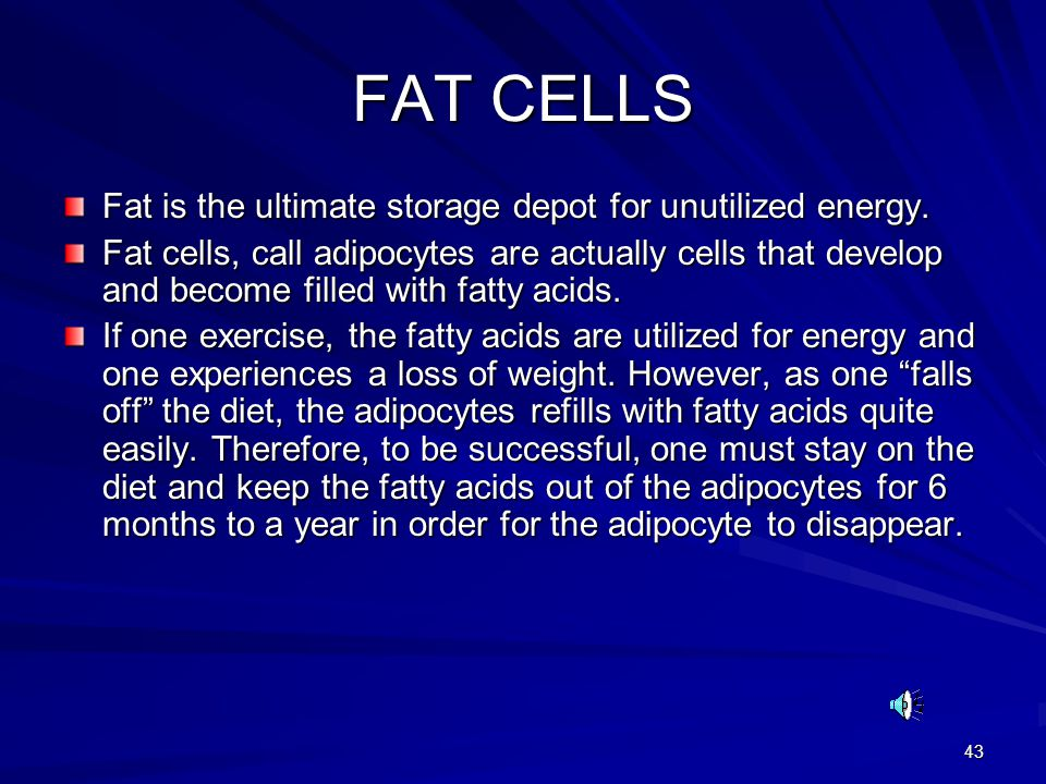 FAT CELLS Fat is the ultimate storage depot for unutilized energy.