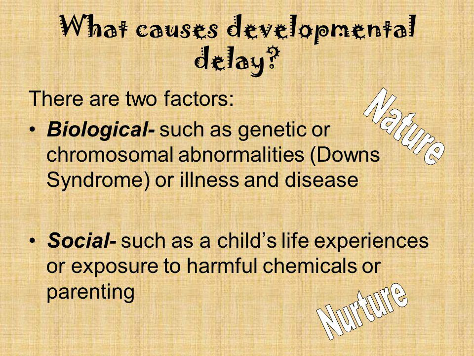 What causes developmental delay