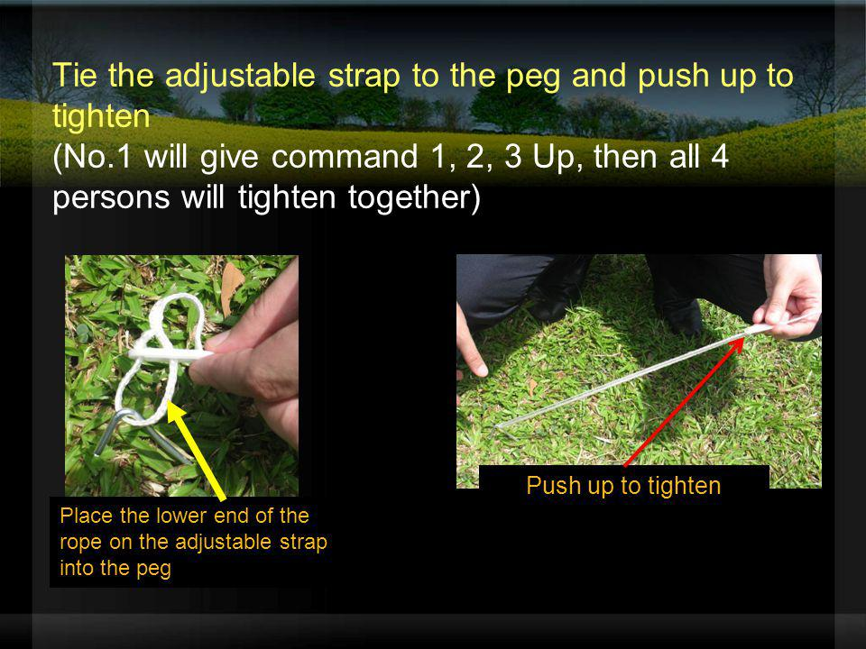 Tie the adjustable strap to the peg and push up to tighten (No