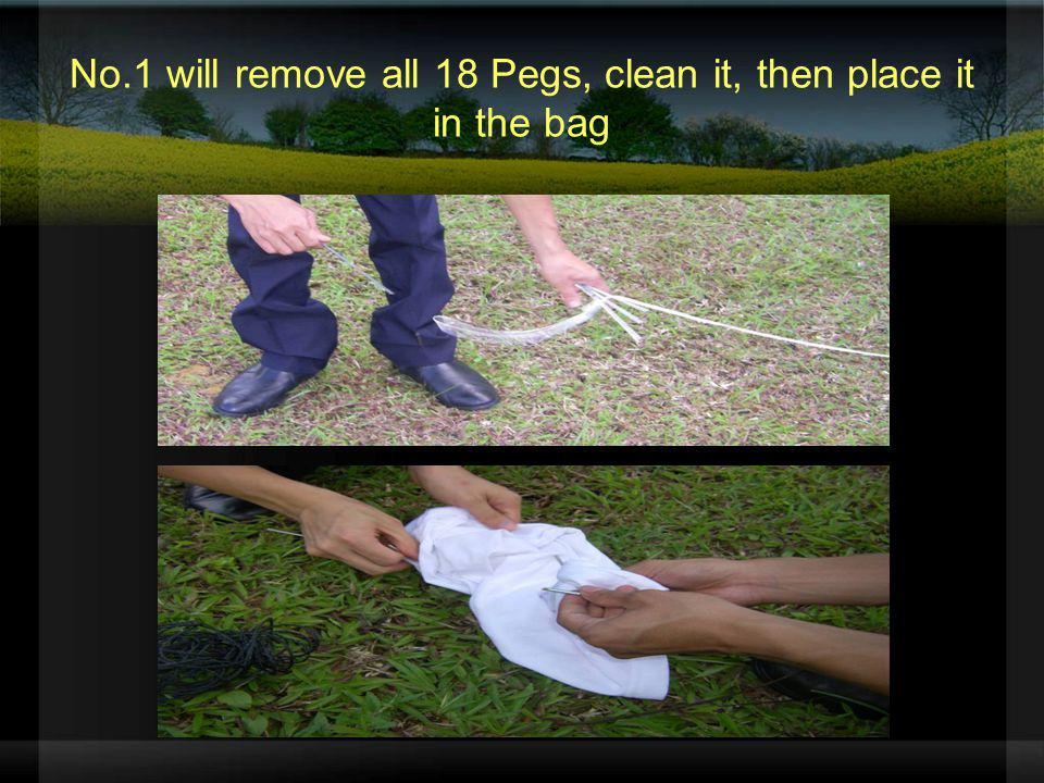 No.1 will remove all 18 Pegs, clean it, then place it in the bag