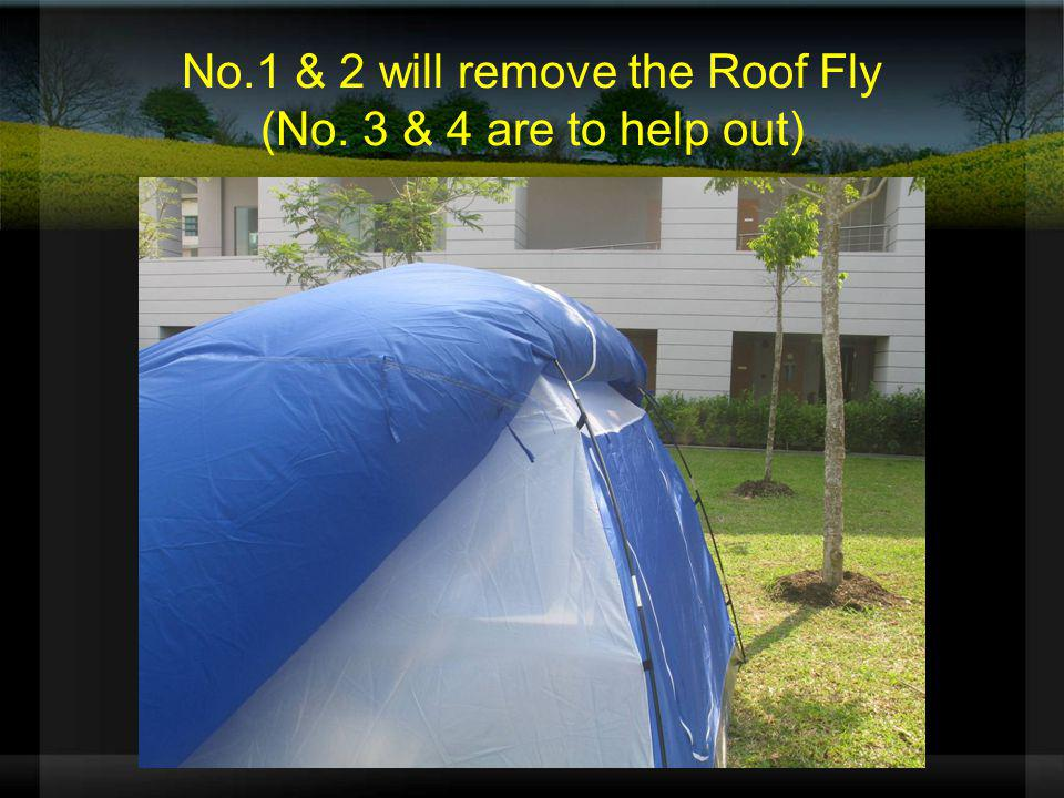 No.1 & 2 will remove the Roof Fly (No. 3 & 4 are to help out)
