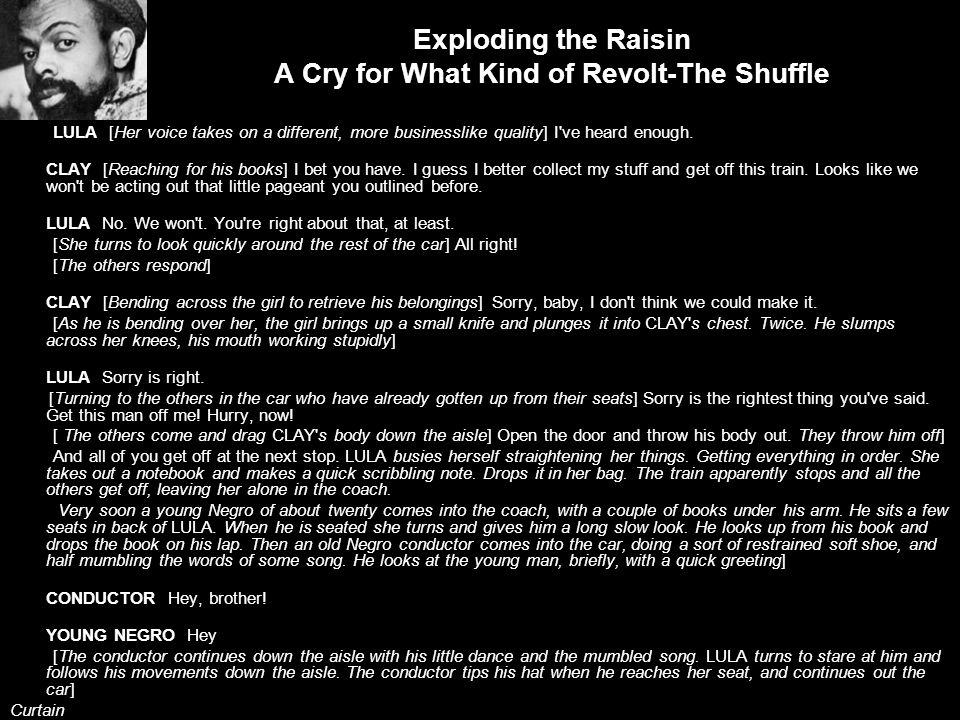 Exploding the Raisin A Cry for What Kind of Revolt-The Shuffle