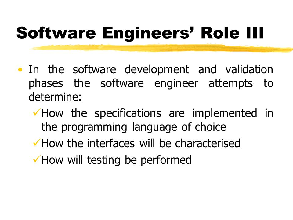 Software Engineers' Role III