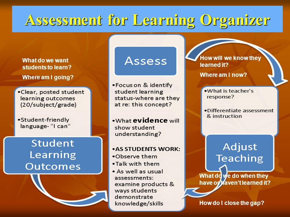 Assessment for Learning Organizer