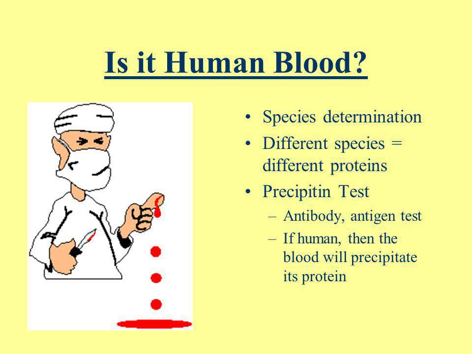 Is it Human Blood Species determination