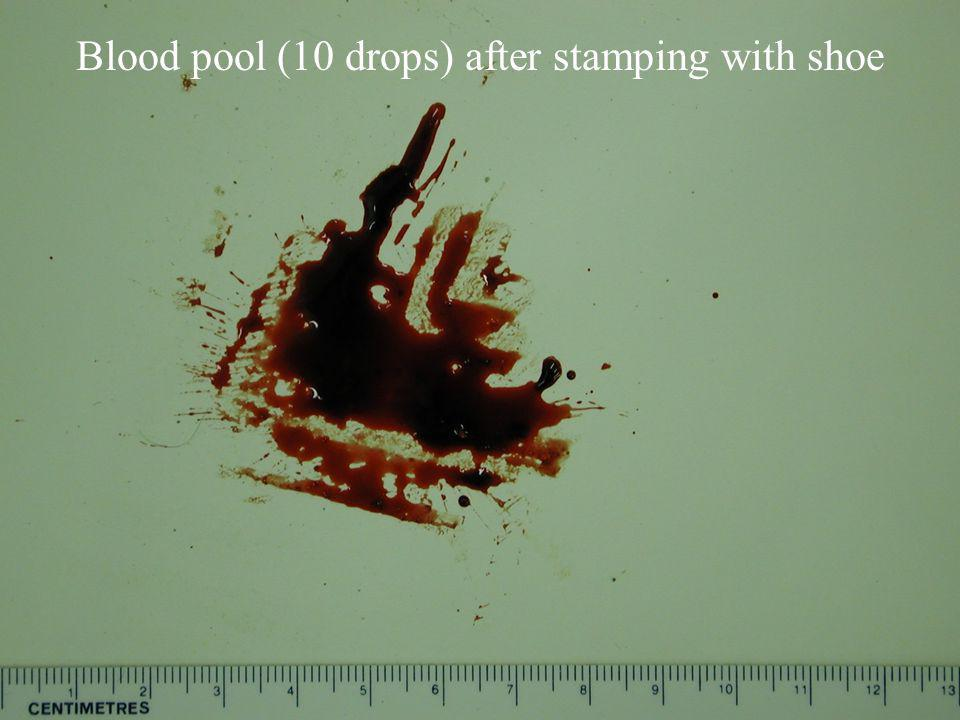 Blood pool (10 drops) after stamping with shoe