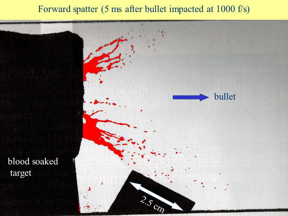 Forward spatter (5 ms after bullet impacted at 1000 f/s)