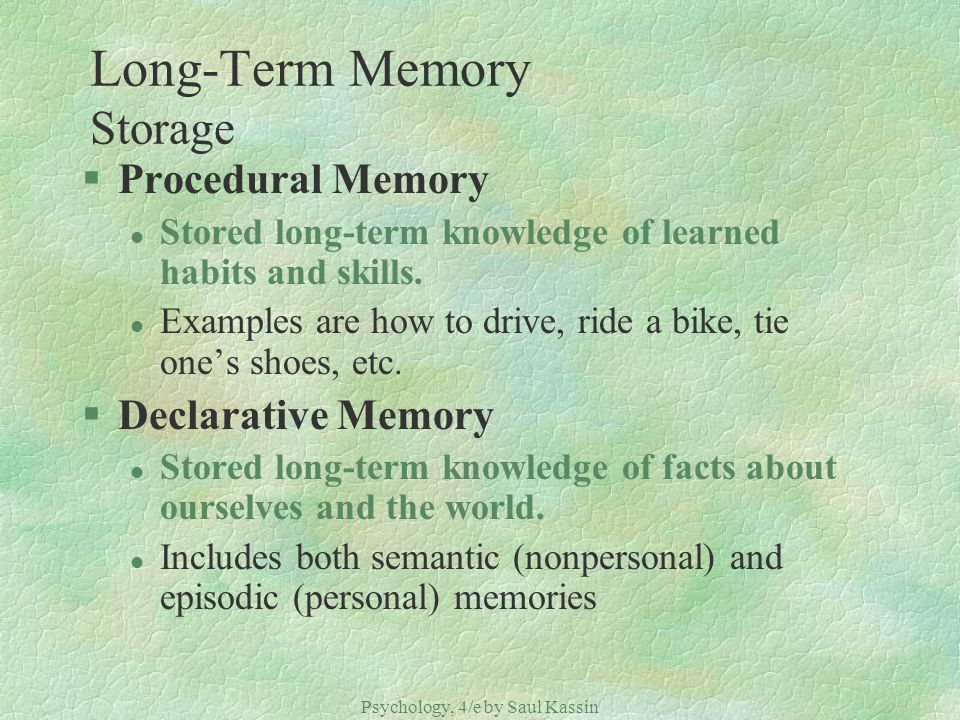 Long-Term Memory Storage