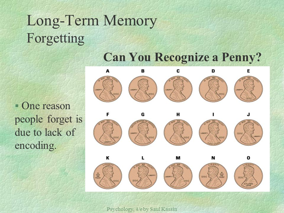 Long-Term Memory Forgetting Can You Recognize a Penny