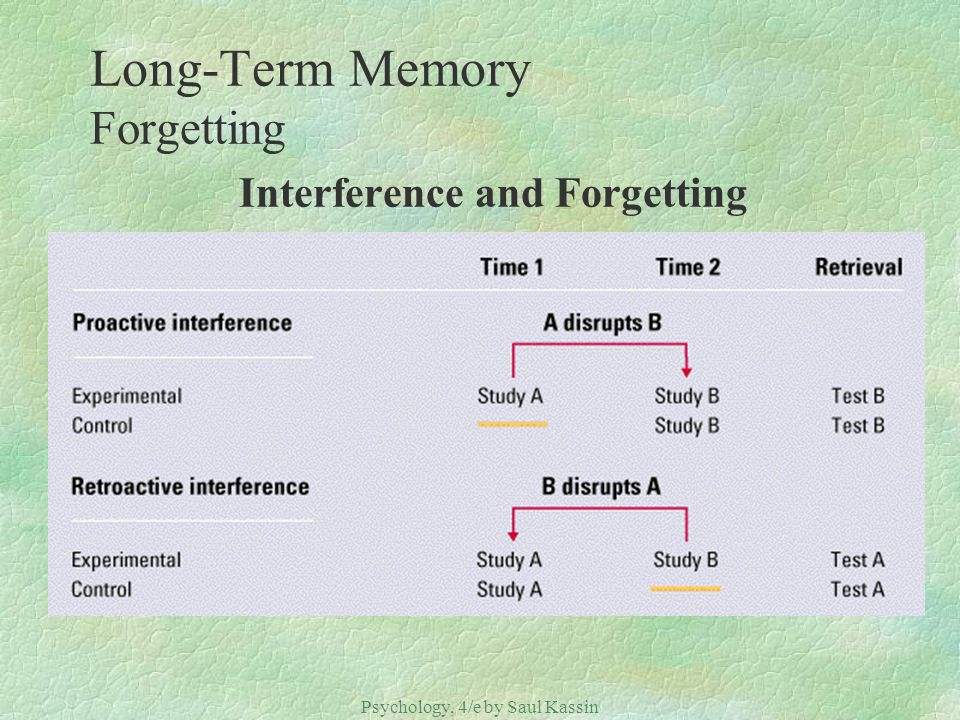 Long-Term Memory Forgetting Interference and Forgetting