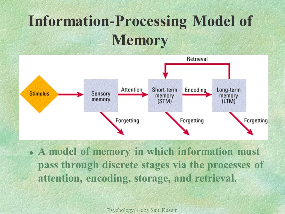 Information-Processing Model of Memory