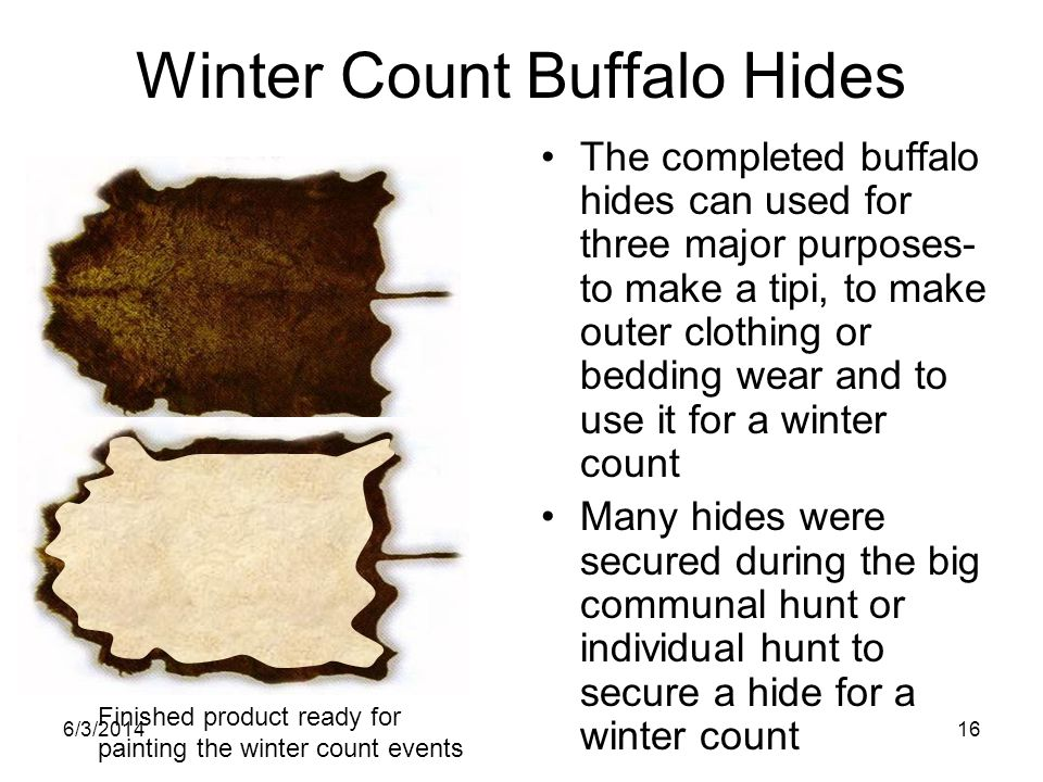 Winter Count Buffalo Hides