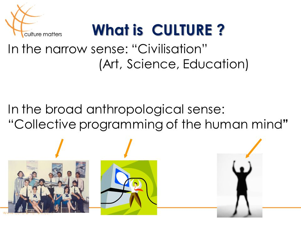 What is CULTURE In the narrow sense: Civilisation