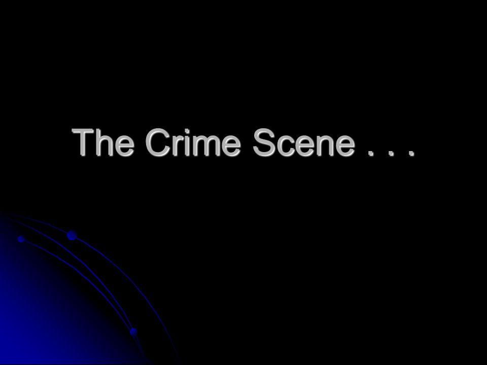 The Crime Scene . . .