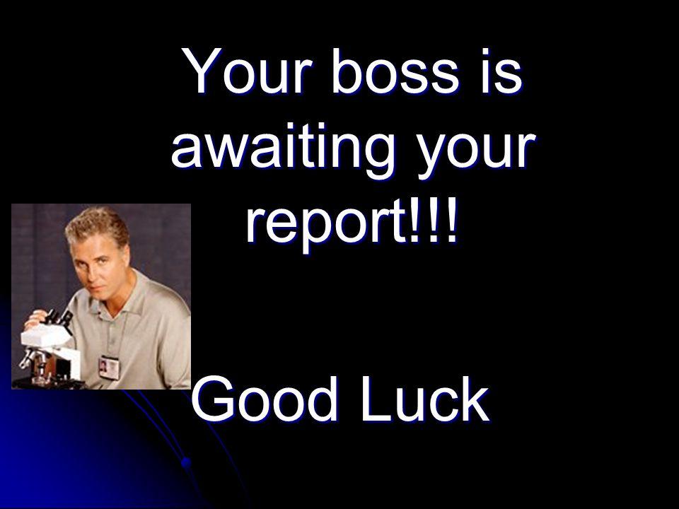 Your boss is awaiting your report!!!