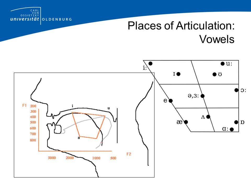 Places of Articulation: