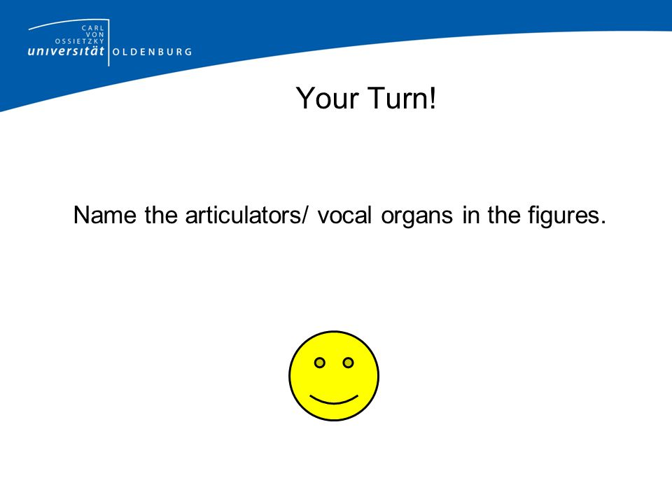 Name the articulators/ vocal organs in the figures.