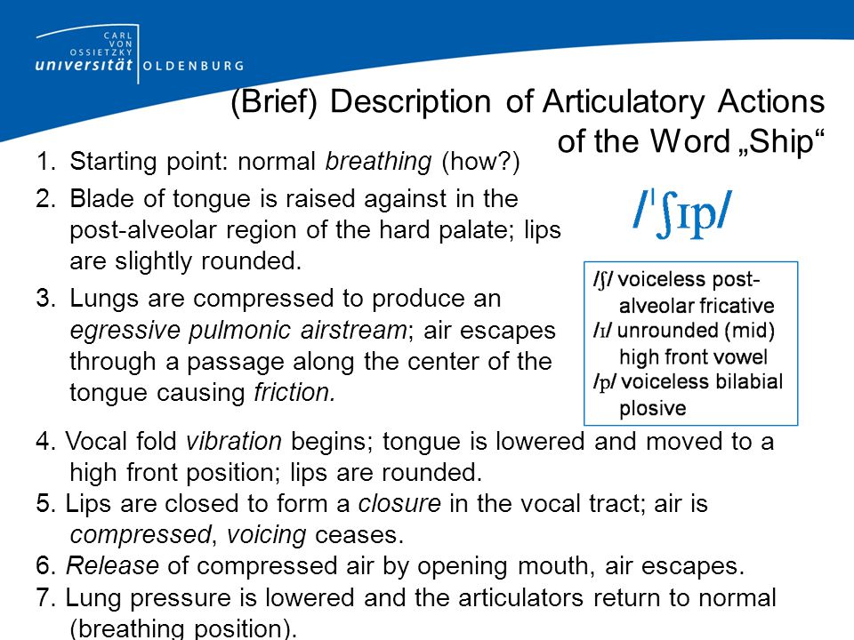 "(Brief) Description of Articulatory Actions of the Word ""Ship"