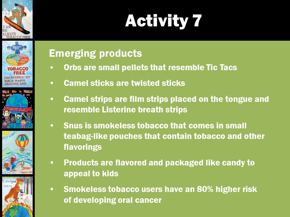 Activity 7 Emerging products Camel sticks are twisted sticks