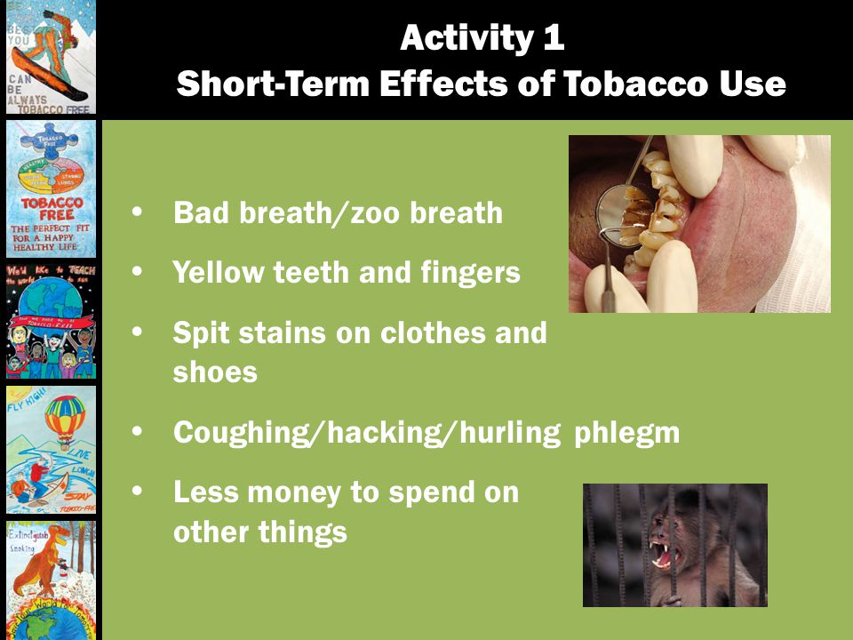 Activity 1 Short-Term Effects of Tobacco Use