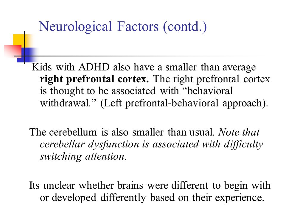 Neurological Factors (contd.)
