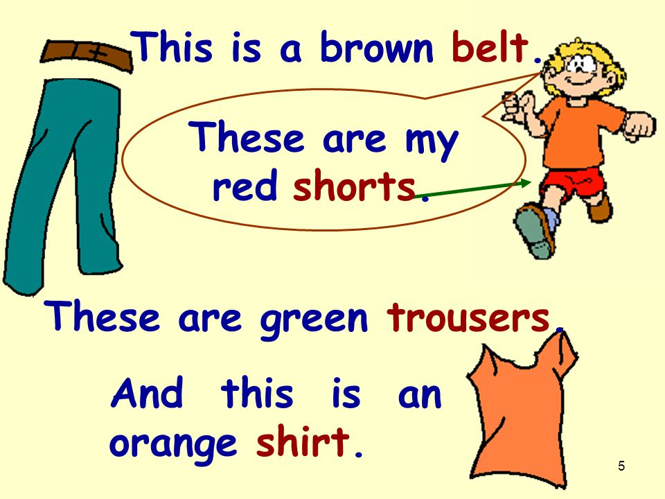 This is a brown belt. These are my red shorts. These are green trousers.