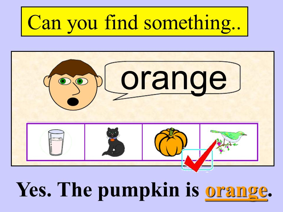 Yes. The pumpkin is orange.