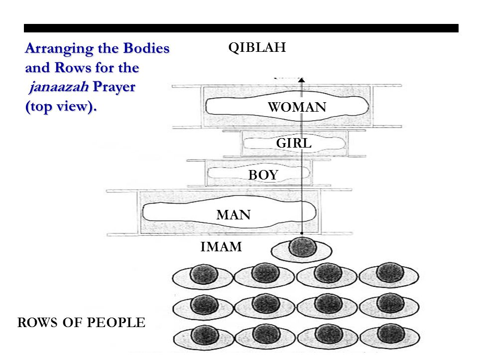 Arranging the Bodies and Rows for the janaazah Prayer (top view).