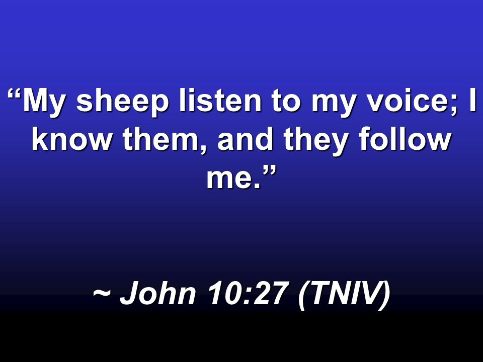My sheep listen to my voice; I know them, and they follow me.