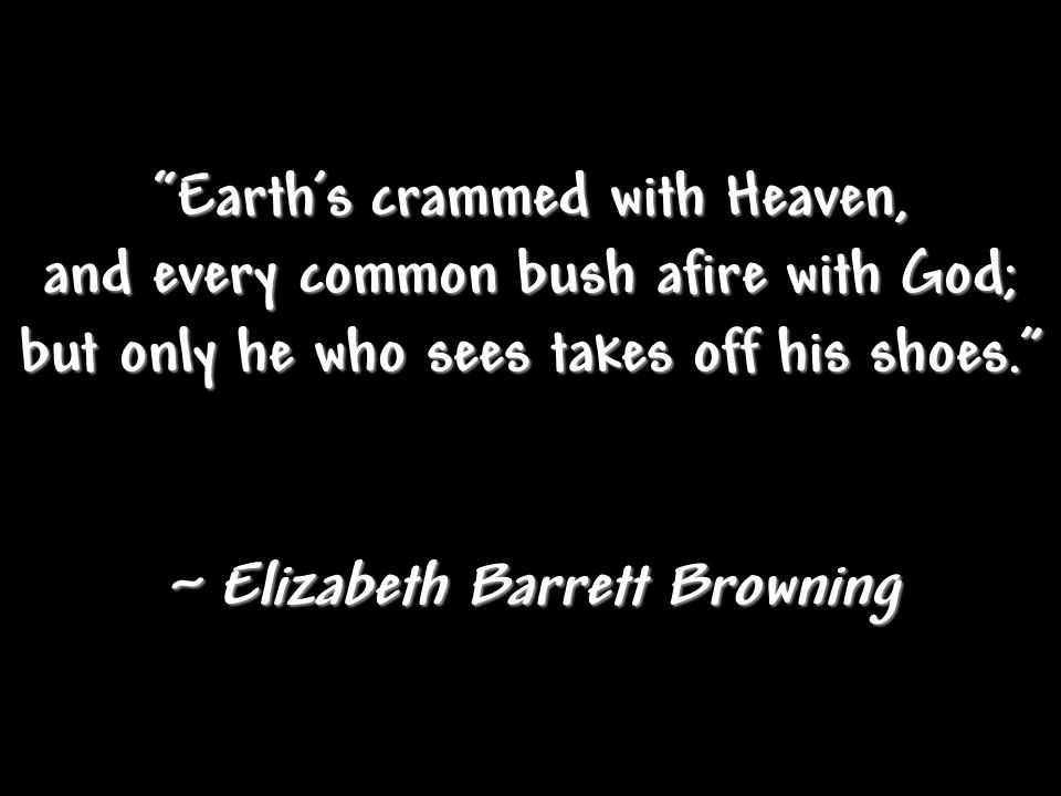 Earth's crammed with Heaven, and every common bush afire with God;