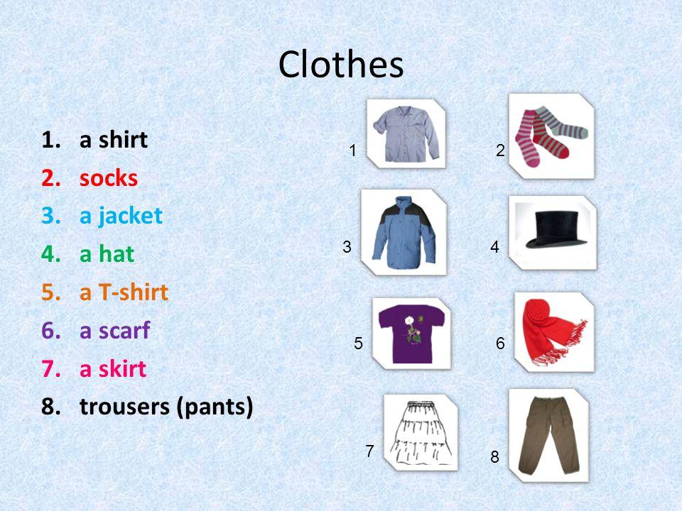 Clothes a shirt socks a jacket a hat a T-shirt a scarf a skirt