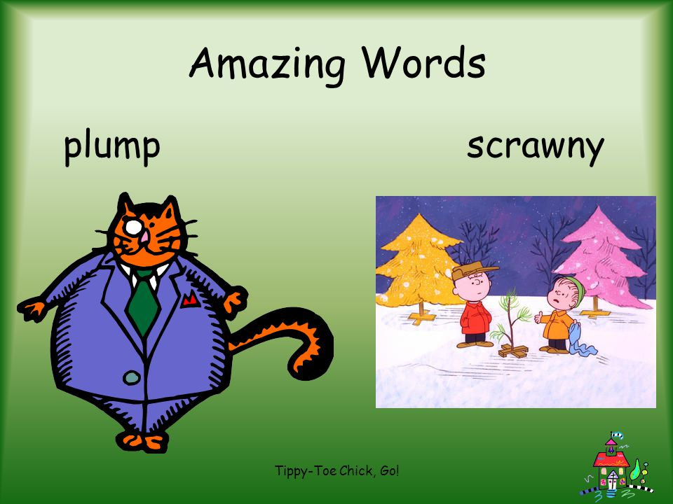 Amazing Words plump scrawny Tippy-Toe Chick, Go!