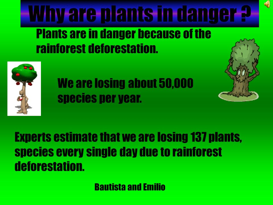 Why are plants in danger