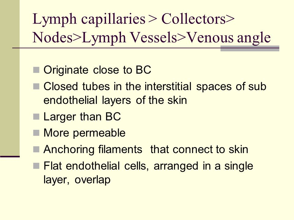 Lymph capillaries > Collectors> Nodes>Lymph Vessels>Venous angle