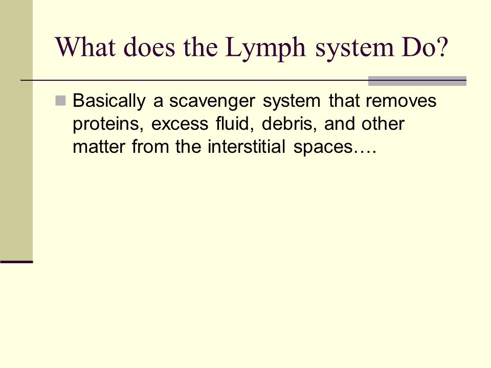 What does the Lymph system Do