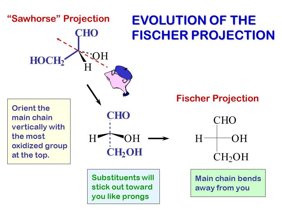 EVOLUTION OF THE FISCHER PROJECTION C H O O H H O C H C H O C H O H O