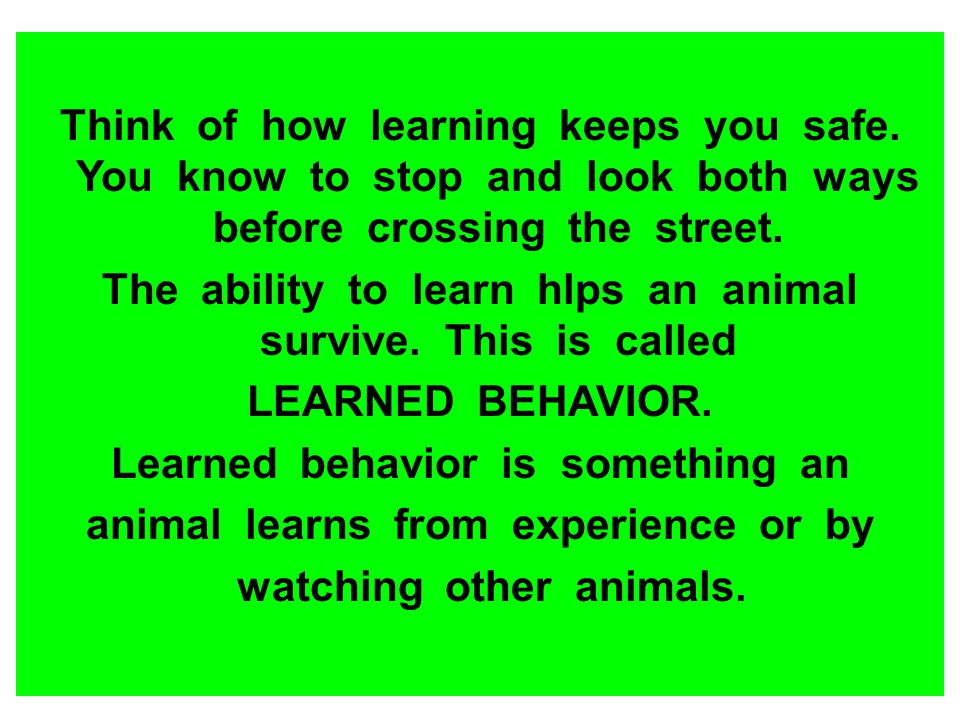 The ability to learn hlps an animal survive. This is called