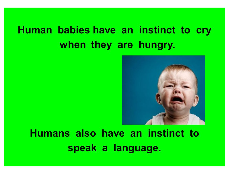 Human babies have an instinct to cry Humans also have an instinct to