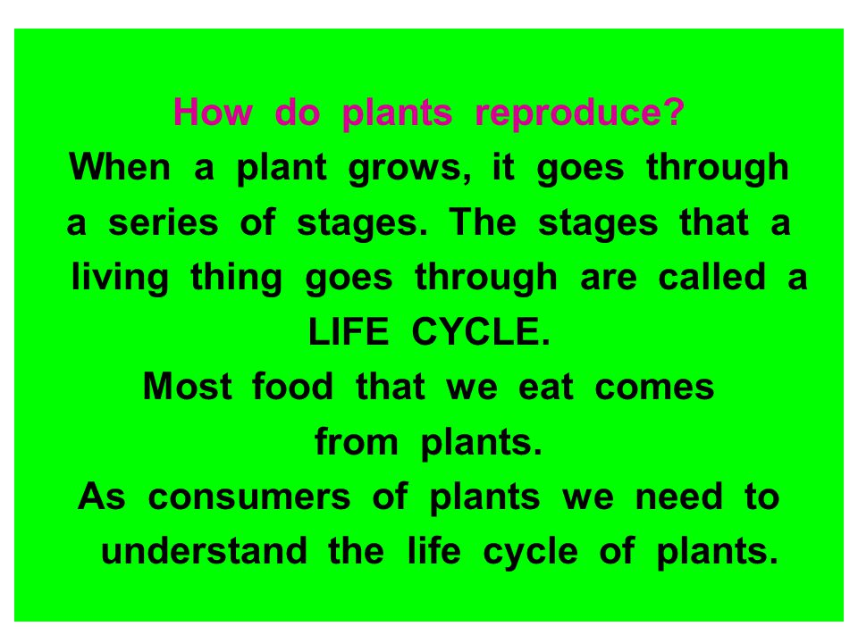 How do plants reproduce When a plant grows, it goes through