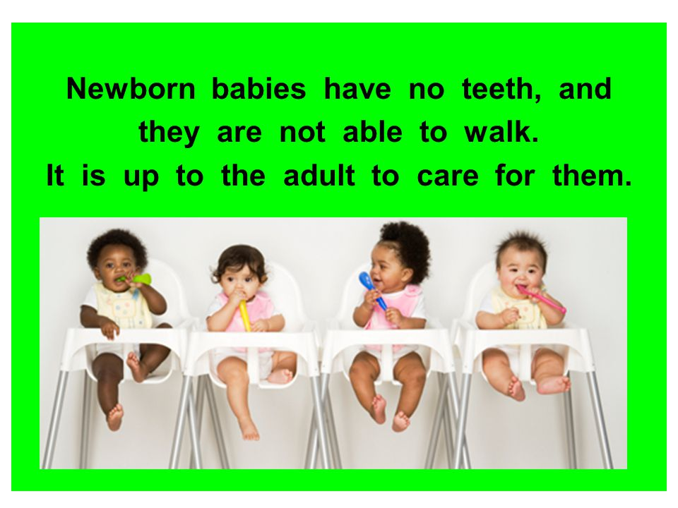 Newborn babies have no teeth, and they are not able to walk.