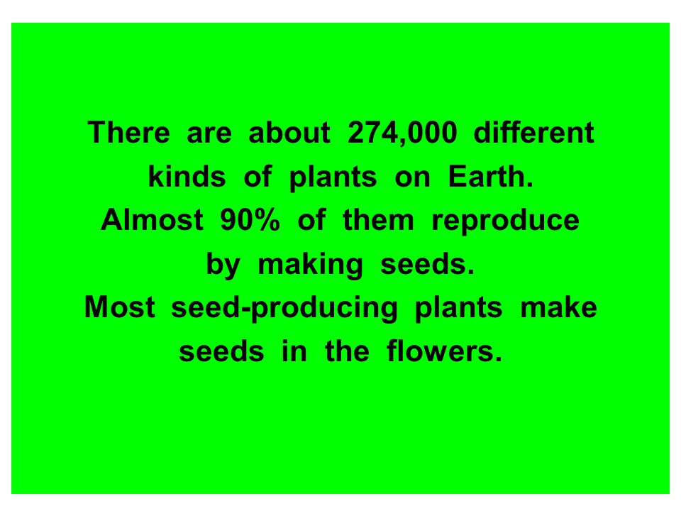 There are about 274,000 different kinds of plants on Earth.