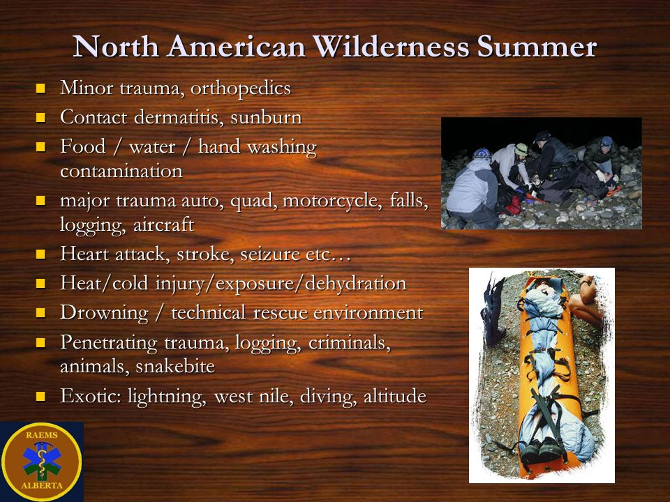 North American Wilderness Summer