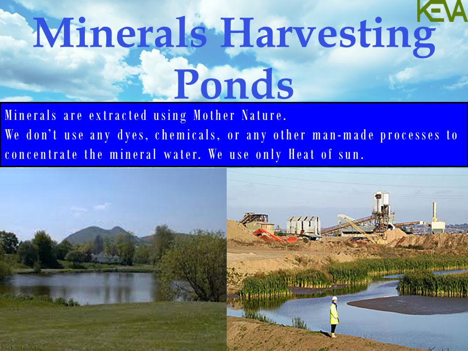 Minerals Harvesting Ponds