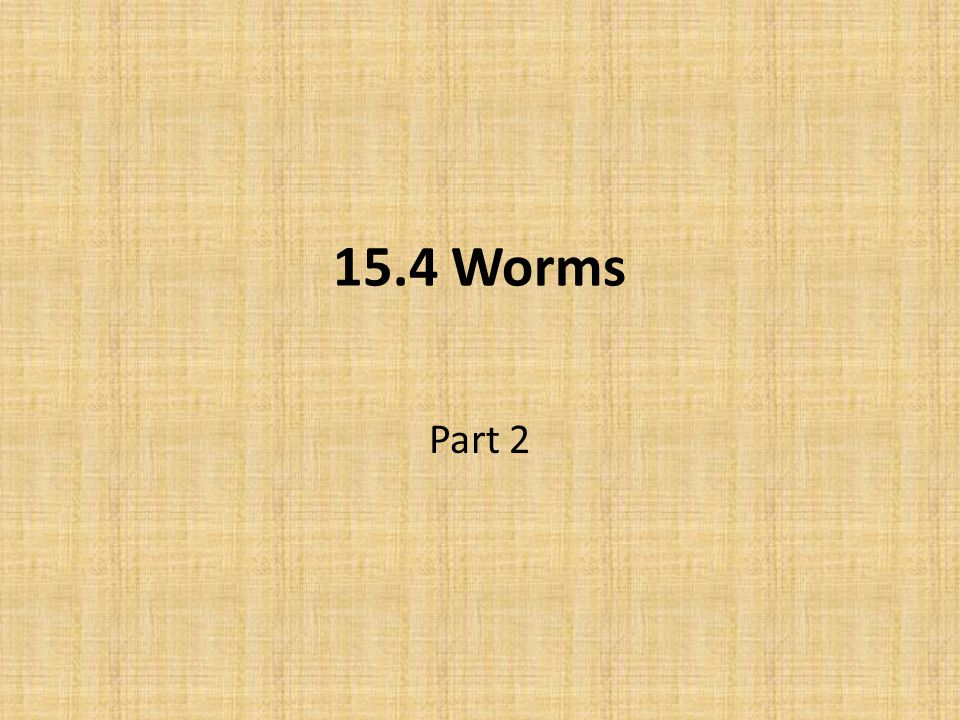 15.4 Worms Part 2